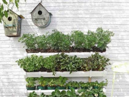 Így kertészkedj kis helyen! - NLCafé