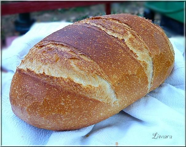 Két dolog kell az igazán jó házi kenyérhez: tippek a profitól és mega-receptgyűjtemény