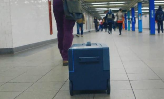 Megérkezett az utazók álma: kiskutyaként követ az okosbőrönd