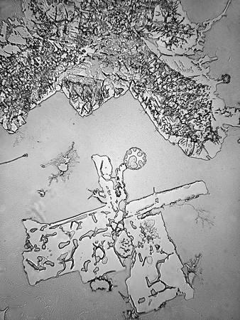 Így festenek a boldogság és a szomorúság könnycseppjei mikroszkóp alatt