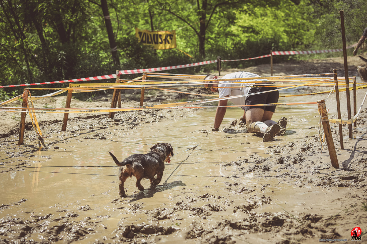 Hard Dog Race 2017