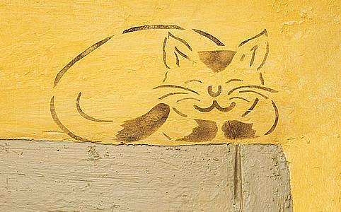 Otthont varázsolhatsz a lakásból ezzel a macsekkal