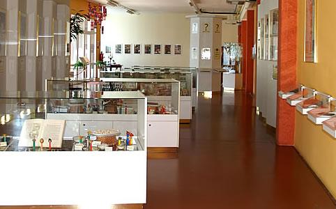 Európa legjobb csokimúzeumai: 5+1 tipp kreatív édesszájúaknak