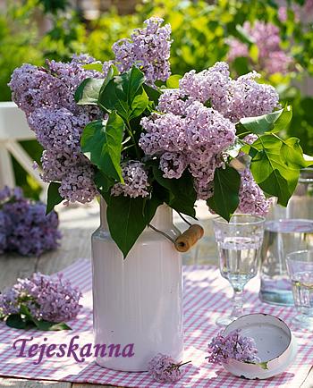 10 filléres  alternatíva, ha unod a vázát