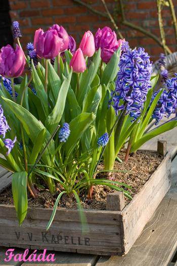 10 alternatíva,  ha unod a vázát