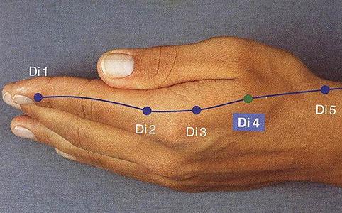 A Vastagbél 4-es pont (a képen Di-4) a kézháton, a hüvelykujj és a mutatóujj kézközépcsontjai között található